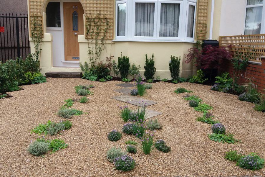 Greening a grey front garden - in flower