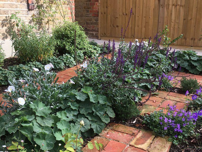 lush-front-garden-02