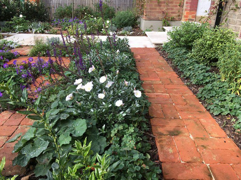 lush-front-garden-03