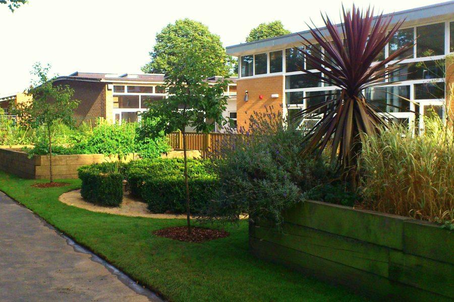 Fielding Primary School - Bamboo Garden