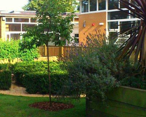 Commercial public spaces - Fielding primary school